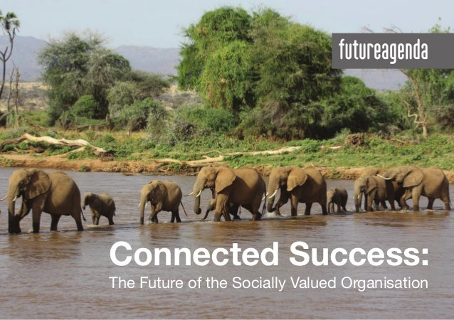 Connected Success: The Future of the Socially Valued Organisation
