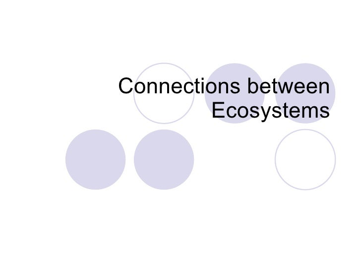 Connections between Ecosystems