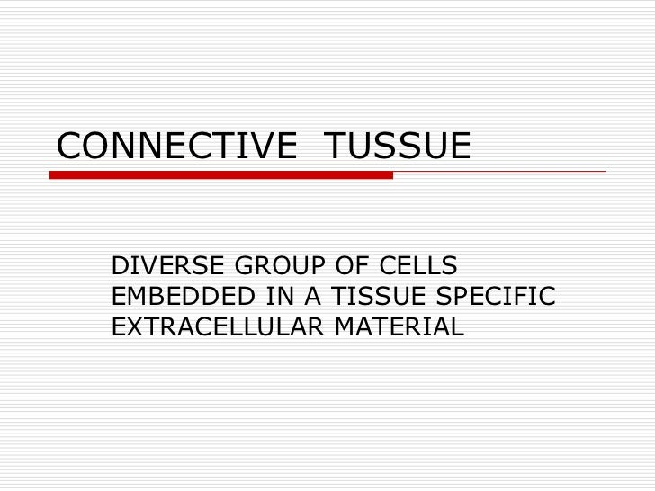 CONNECTIVE TUSSUE  DIVERSE GROUP OF CELLS  EMBEDDED IN A TISSUE SPECIFIC  EXTRACELLULAR MATERIAL