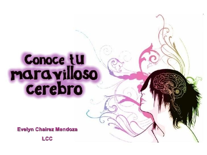 Evelyn Chairez Mendoza LCC