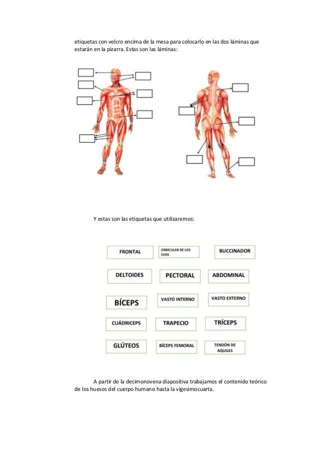 Conocemos nuestro cuerpo