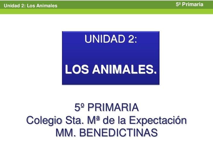Unidad 2: Los Animales                   5º Primaria                           UNIDAD 2:                         LOS ANIMA...