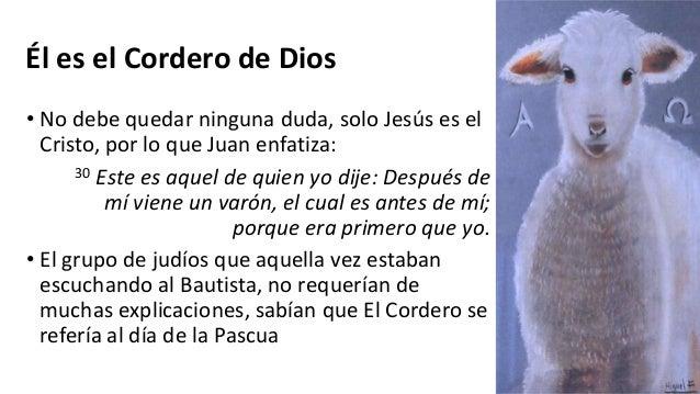Cordero De Dios El Se - Zomerjassen