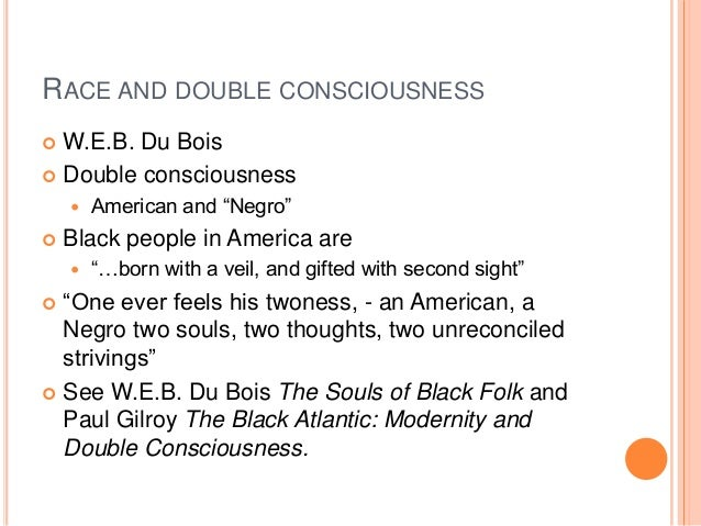 "essay on double consciousness John"" and ""of the meaning of progress,"" essays in souls that demonstrate a  in  this passage, du bois advances double consciousness as a method of."