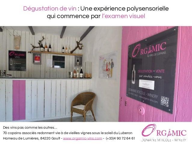 Dégustation de vin : Une expérience polysensorielle qui commence par l'examen visuel Des vins pas comme les autres… 70 cop...