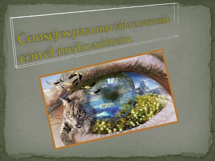 Consejos para estar en armonía con el medio ambiente
