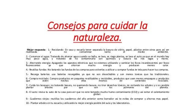 Consejos para cuidar la naturaleza l j - Como cuidar las hortensias de exterior ...