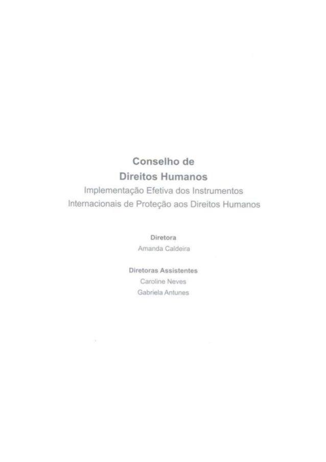 Implementação Efetiva dos Instrumentos Internacionais de Proteção aos Direitos Humanos (CDH)