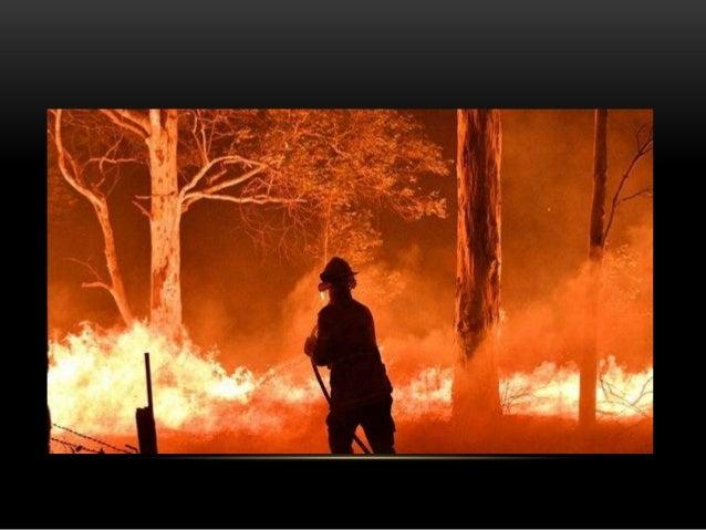 https://g1.globo.com/globonews/estudio-i/video/veja-a-dimensao-do-maior- incendio-na-australia-em-20-anos-8218643.ghtml Ví...