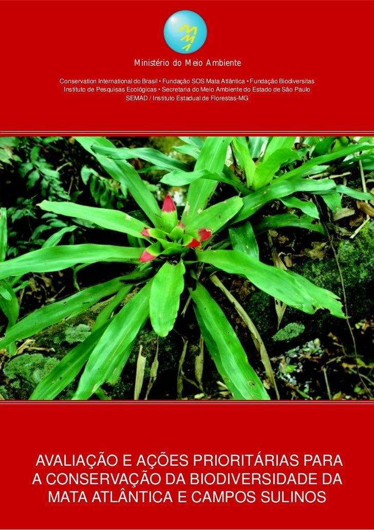 Ministério do Meio Ambiente   Conservation International do Brasil • Fundação SOS Mata Atlântica • Fundação Biodiversitas ...