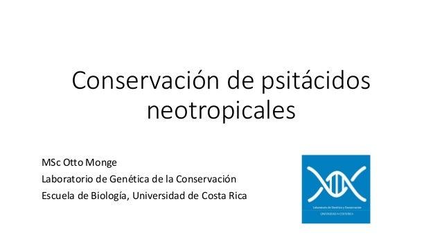Conservación de psitácidos neotropicales MSc Otto Monge Laboratorio de Genética de la Conservación Escuela de Biología, Un...