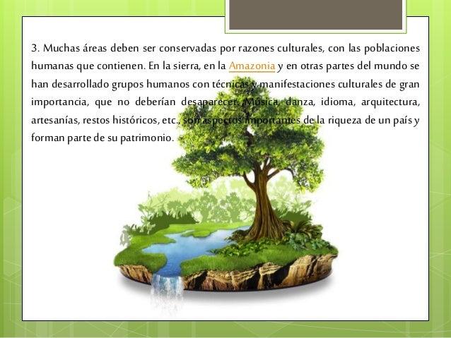 Cuidado y conservacion del medio ambiente - Ambientadores naturales para la casa ...