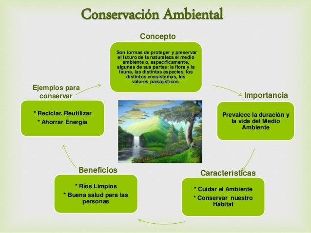 Resultado de imagen para la conservacion del ambiente