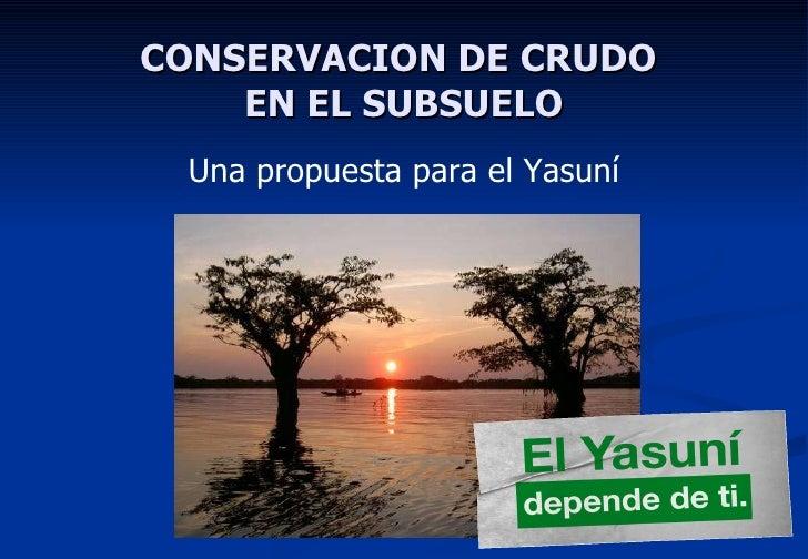 CONSERVACION DE CRUDO  EN EL SUBSUELO <ul><li>Una propuesta para el Yasuní </li></ul>