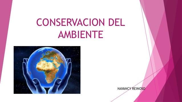 CONSERVACION DEL AMBIENTE NAYANCY REINOSO