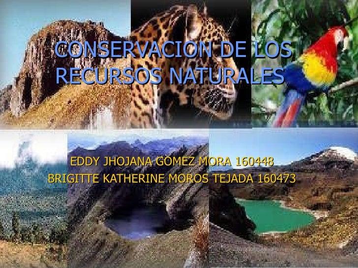 preservacion y conservacion de los recursos naturales spanish edition