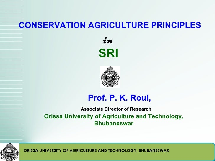 CONSERVATION AGRICULTURE PRINCIPLES                               in                              SRI                     ...