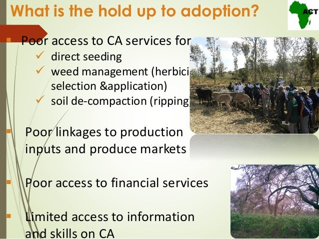 Conservation agriculture in africa act experiences at the for 98 soil compaction