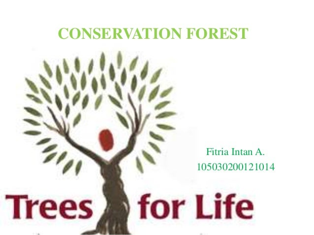 CONSERVATION FOREST Fitria Intan A. 105030200121014