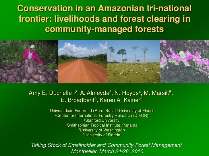 Conservation in an Amazonian tri-national frontier: livelihoods and forest clearing in community-managed forests<br />Amy ...