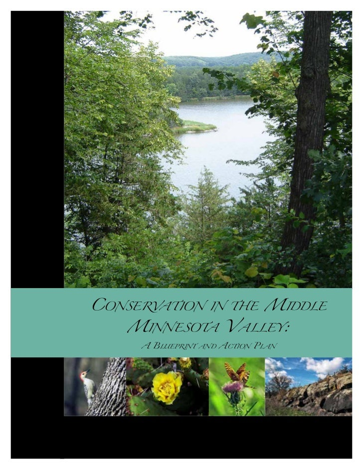 CONSERVATION IN THE MIDDLE                   MINNESOTA VALLEY:                                 A BLUEPRINT AND ACTION PLAN...