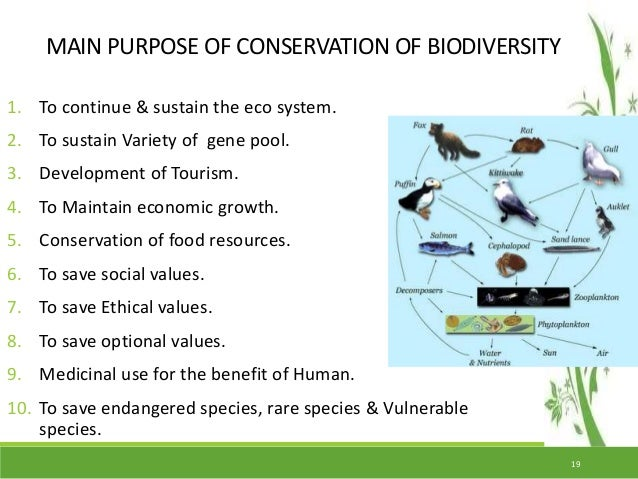 Conservation Of Biodiversity In India Amp Endangered Endemic