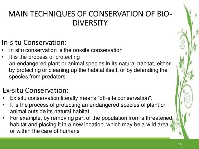 essay on conservation of biodiversity in india Essays from bookrags provide great ideas for biodiversity essays and paper topics like essay view this student essay about biodiversity.
