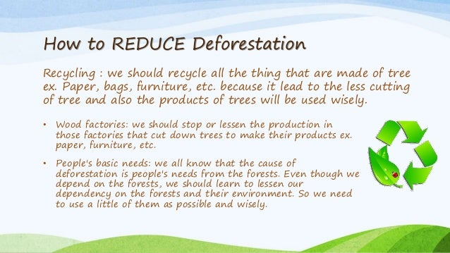 Conservation Of Forest