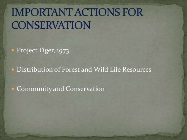 essay on wild life conservation wildlife conservation is as necessary as we ourselves are so conserve wildlife and save the life of the world essay topic wildlife conservation