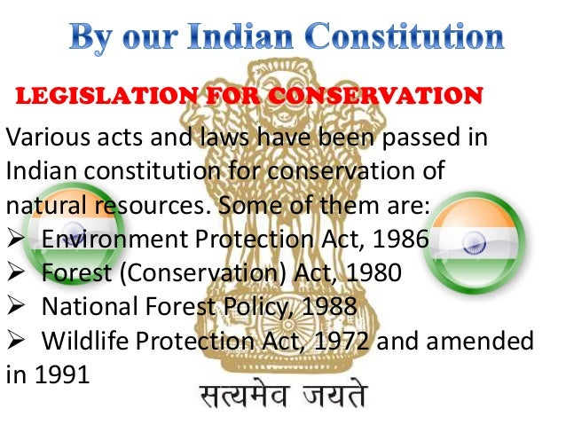 nature protects if she is protected essay Wildlife conservation essay sample in order to instigate wildlife conservation efforts in india, world wildlife fund has set up various groups india hosts diverse kinds of wildlife species possibly due to the broad range of weather, soil, climate, and other similar factors.