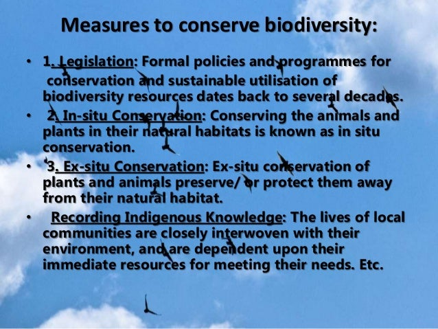government and biodiversity Protecting forests and restoring wetlands are some of the actions companies and governments are taking to make up for biodiversity lost as a result of th.
