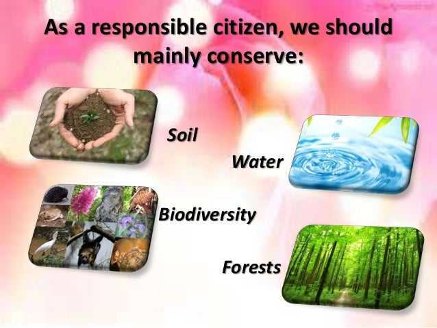 role of an individual in conservation of natural resources essay Natural resource management is a discipline in the management of natural resources such as land, water, soil, plants, and animals—with a particular focus on how management affects quality of life for present and future generations hence, sustainable development is followed according to judicial use of resources to supply both the present.