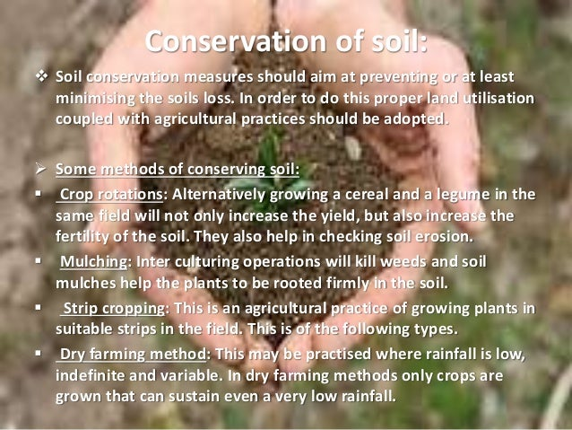 why soil and water conservation is important to my future essay