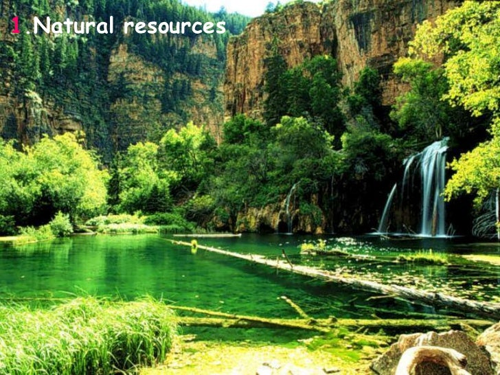 Result Of Conservation Of Natural Resources