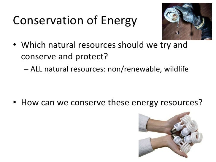 How Can Humans Conserve And Protect Natural Resources