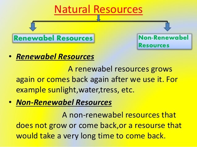 Natural Resources That Can Be Conserved