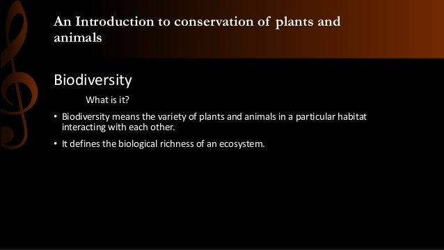 Importance of plants and animals