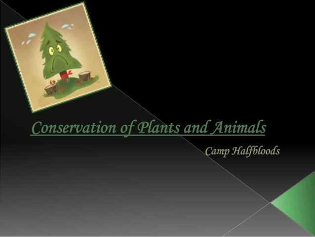  Good Morning ,today we will be taking a class on Chapter 7- Conservation of Plants and Animals . The half-bloods of Camp...