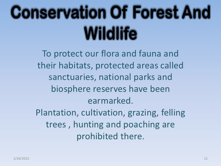 the conservation of wildlife and their Conservation of wildlife is important to protect the endangered plants and animal  species along with their natural habitat the main concern is.