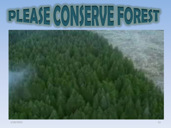 promoting conservation of fauna and flora Conservation - promoting » preservation - promotion » the restoration phares » planning » flora and fauna » international cooperation » research and exchange.