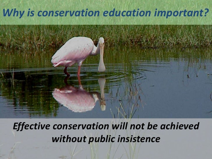 conservation of ecosystem The conservation gateway is for the conservation practitioner, scientist and decision-maker here we share the best and most up-to-date information we use to inform our work at the nature conservancy.