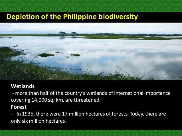 threats to philippine biodiversity Threats to philippine biodiversity - download as pdf file (pdf), text file (txt) or read online threats to philippine biodiversity.