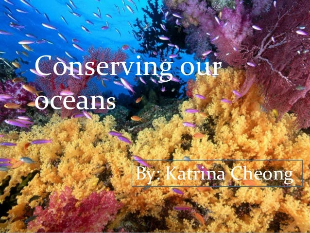 Conserving our oceans By: Katrina Cheong