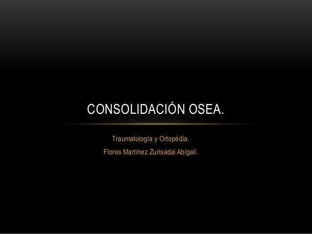 Traumatología y Ortopédía. Flores Martínez Zurisadai Abigail. CONSOLIDACIÓN OSEA.