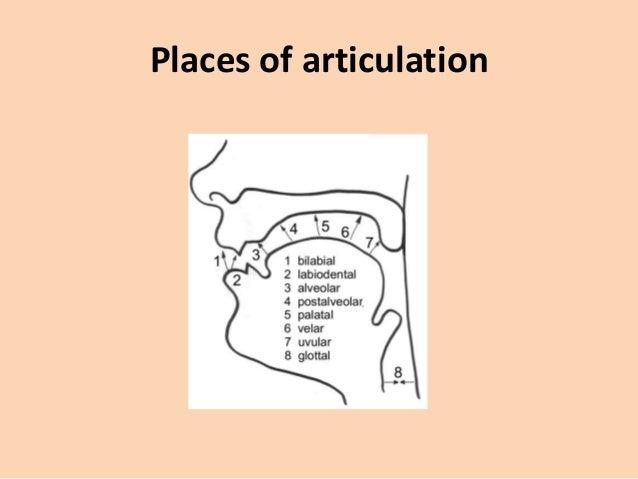 Phonetics: Consonants