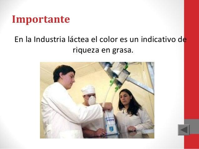 Importante En la Industria láctea el color es un indicativo de riqueza en grasa.