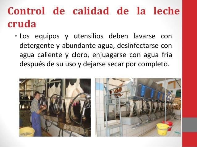 Control de calidad de la leche cruda El área del ordeño debe estar limpia y asegurar la ausencia de roedores e insectos. E...