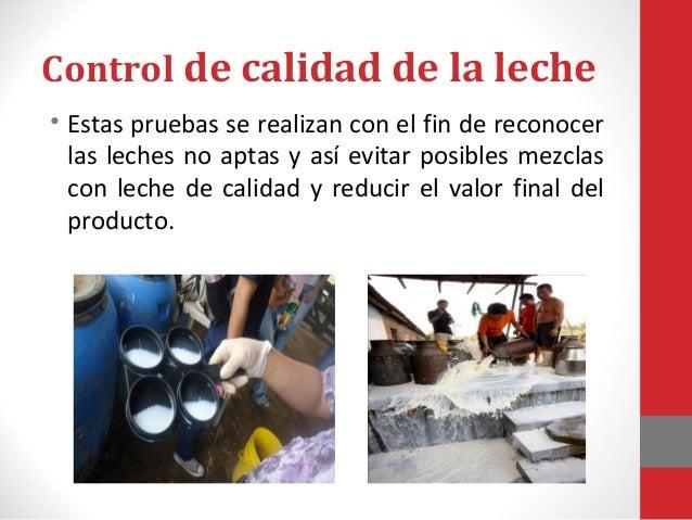 Propiedades fisicoquímicas de la leche según la NTP: 202.001:2003 Sirven para controlar que la leche no haya sufrido alter...