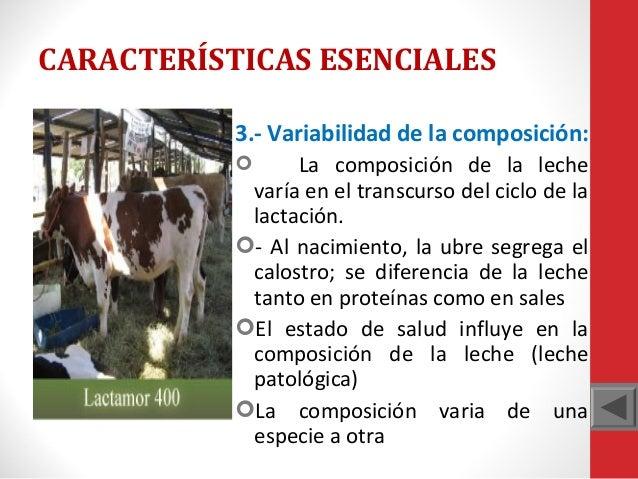 CARACTERÍSTICAS ESENCIALES 3.- Variabilidad de la composición: La composición de la leche varía en el transcurso del ciclo...