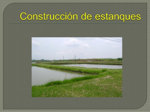 Construcci n de estanques for Mantenimiento de estanques para peces